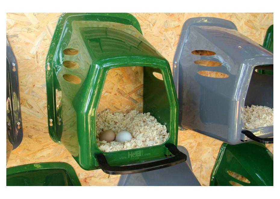 Ako zaistiť znášku vajec?