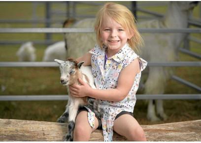 Chceli by ste chovať kozy?